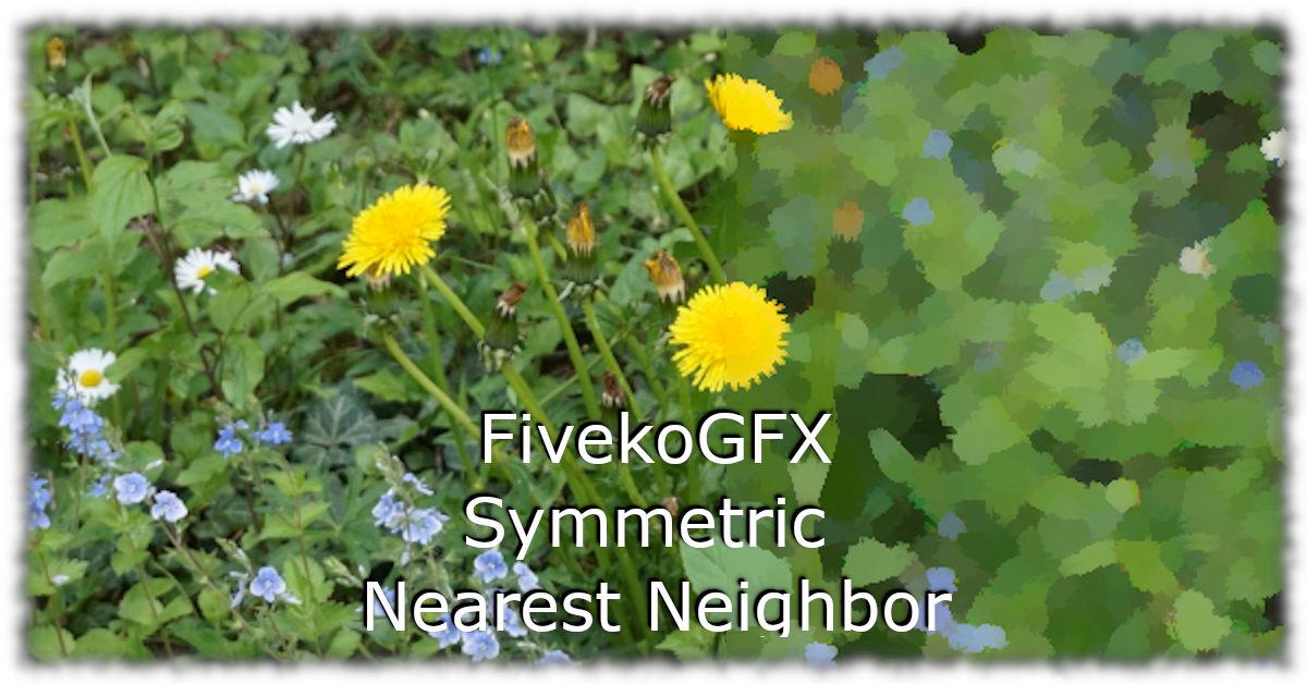 How to implement Symmetric Nearest Neighbor with FivekoGFX API