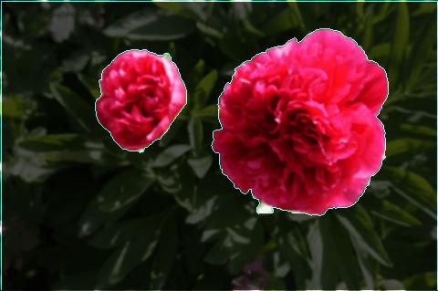 Watershed Image Segmentation
